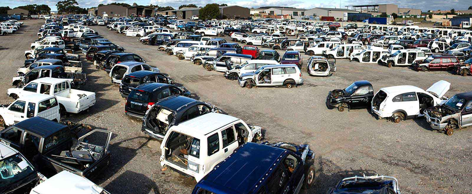 Rows of cars, 4WDs, vans and other vehicles half stipped for parts in wrecking yard.