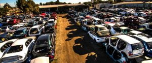 Vehicles ready for disposal at wrecking yard