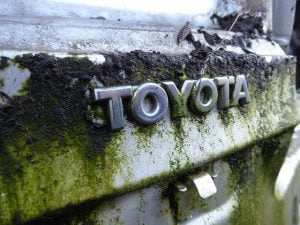Toyota Car Removal Archives Newcastle Top Cash Car Removal